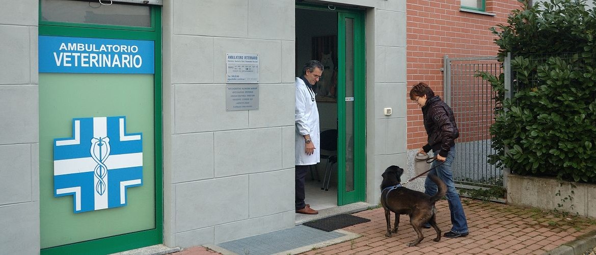ambulatorio veterinario dottor peccioli